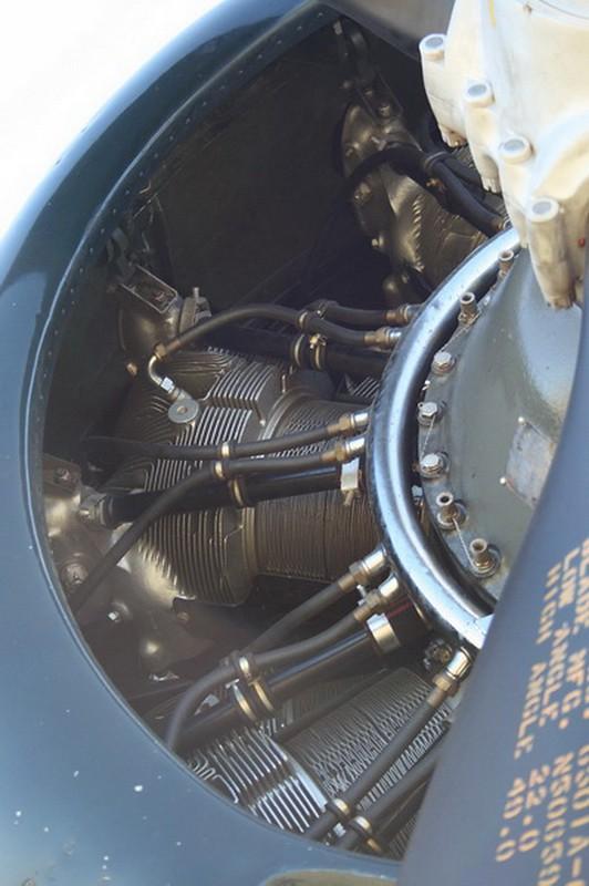 TBM-3E Avenger (3)