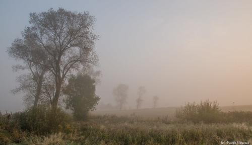 autumn sunset orange fog landscape village poland polska słońce jesień ranek mgła mornig krajobraz lowersilesia dolnyśląsk sigma175028 nikond7000 sulików