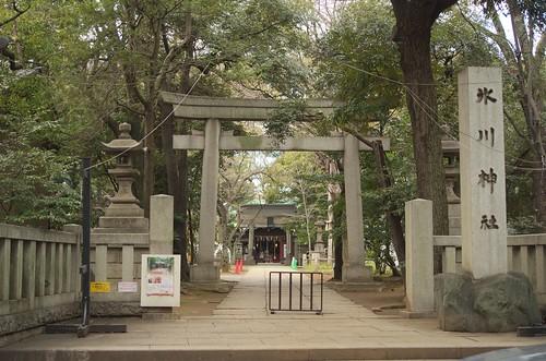赤坂氷川神社 鳥居