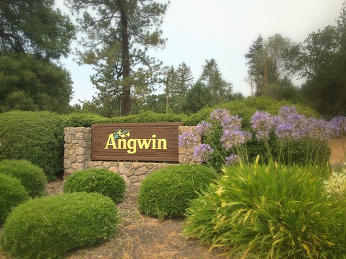Angwin, Napa County, California