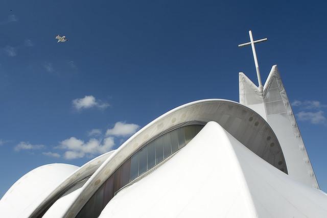 White bird, white church