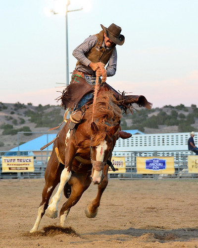 Rio Arriba Rodeo | by Larry Lamsa