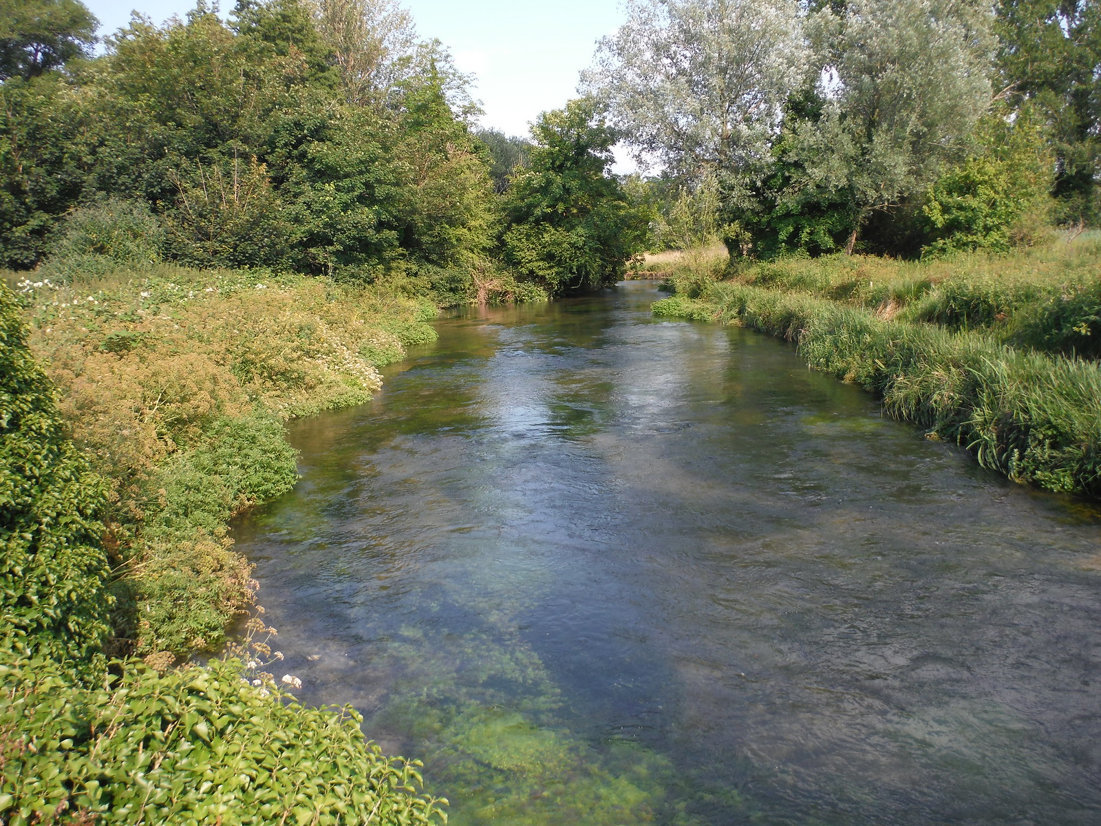 River Itchen by Winchester College SWC Walk 15 : Winchester Circular