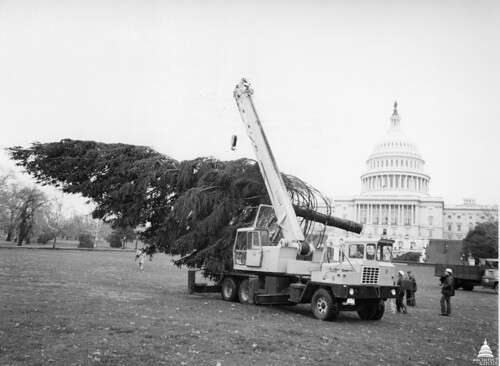 1978 U.S. Capitol Christmas Tree | by USCapitol