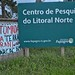 Retomada Guarani Mbya - Maquiné - RS