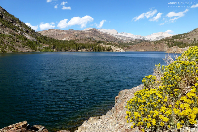 Tioga Lake - Tioga Pass, California