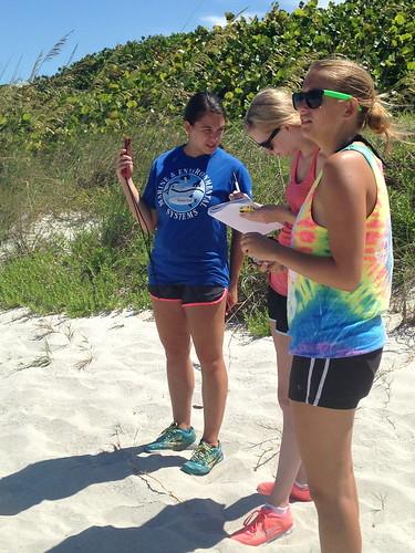 Beachside data observations