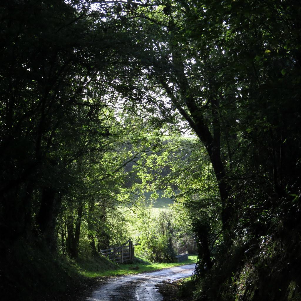 Consulte Les Annonces De Rencontres Sexe En Aveyron