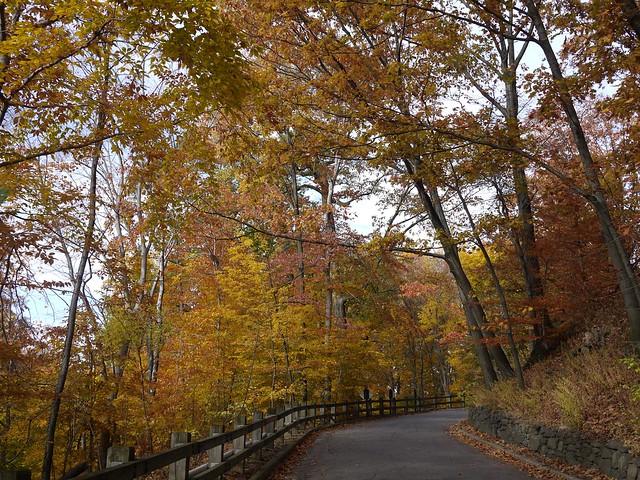 日, 2013-11-03 13:44 - Bronx Botanical Gardenの紅葉