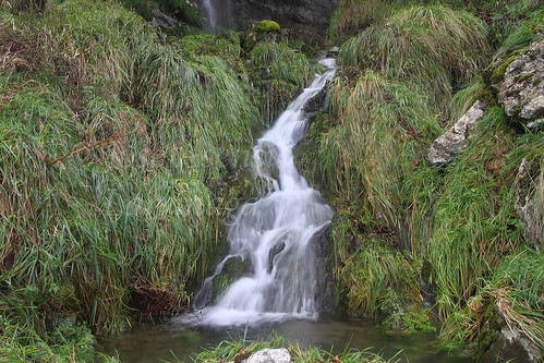 Parque Natural de Gorbeia #DePaseoConLarri #Photography 2594