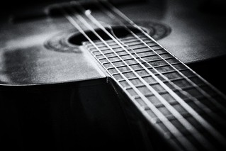 One Broke String_MG_1892 | by Kool Cats Photography over 11 Million Views