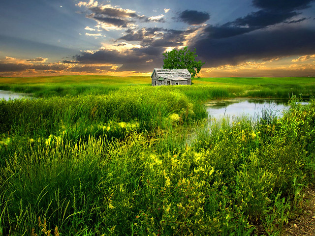 House on the great plains