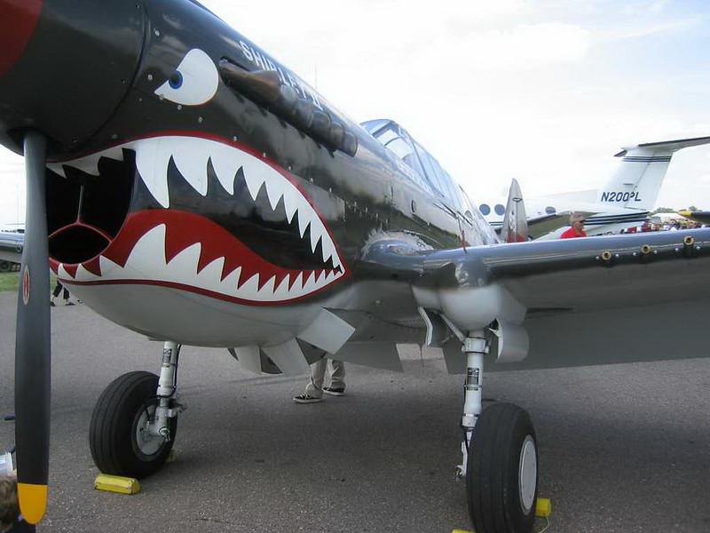 Curtiss P-40 (6)