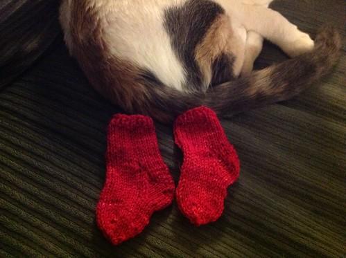 Cat socks....
