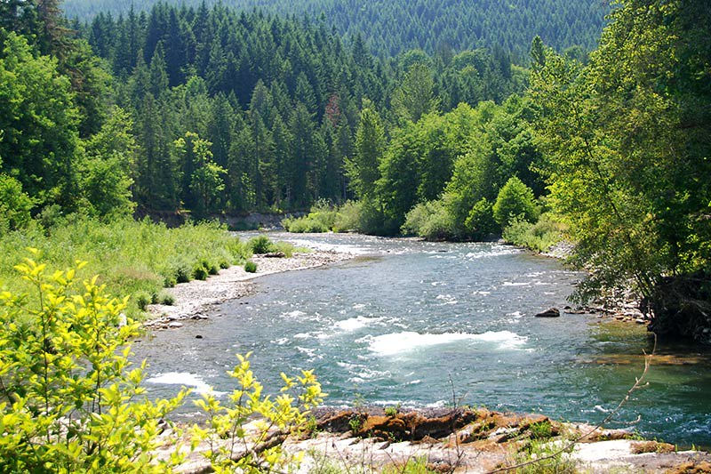 The Cowichan River flows through Cowichan River Park, Cowichan Valley, Vancouver Island, British Columbia, Canada