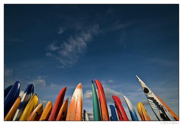 Kayak and Friends, Lyme Regis, UK