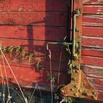door and nettles