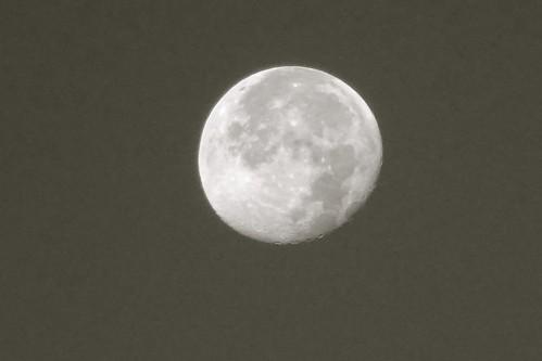 morning moon newyork sunrise blackwhite cool clear gibbous johnsoncity justpastfull