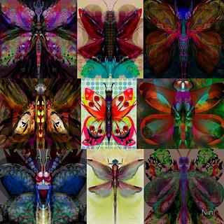 Pseudodamselflies Grid