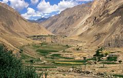 Pakistan_1998_140 Lower Chapursan valley (MB-36)