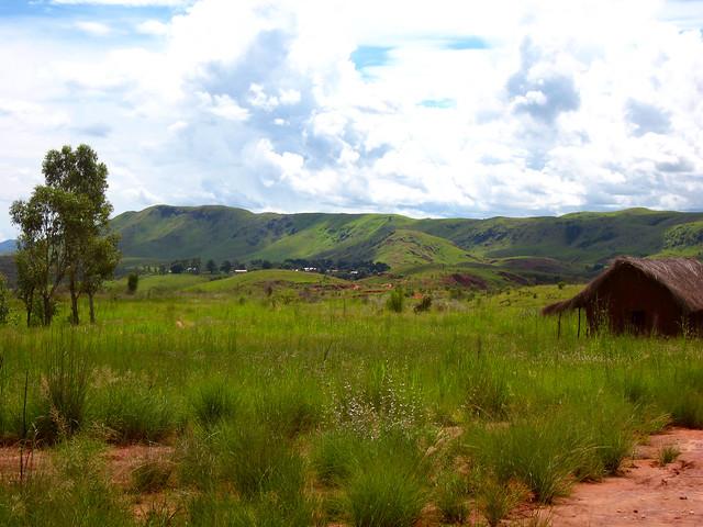 Madagascar2 - 145