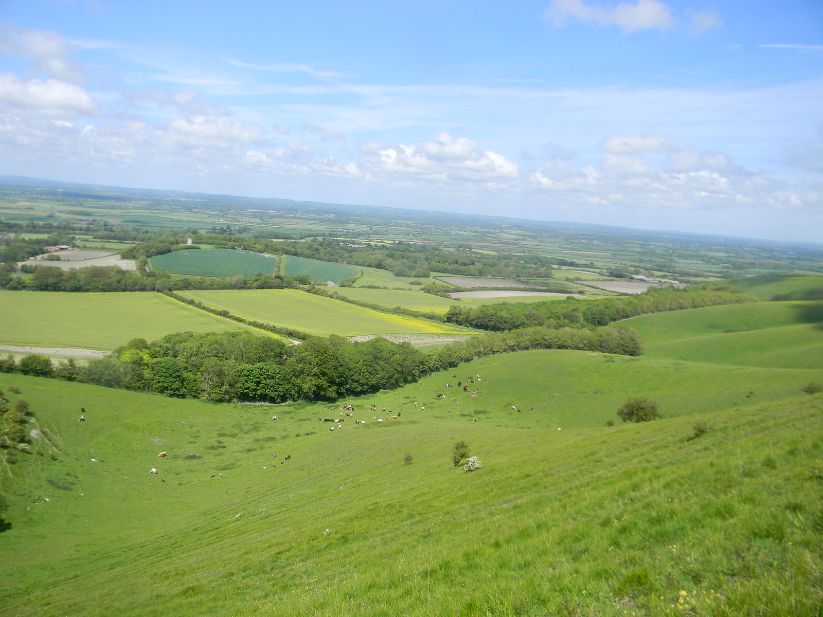 The view down Lewes Circular via West Firle