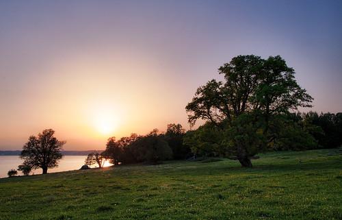 sunset tree oak sweden uppsala ek sverige hdr träd solnedgång uppland morgahage uppsalalän canonef24mmf14liiusm canoneos5dmarkiii