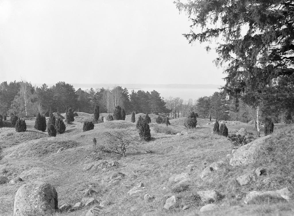 Bjrk, Oppgrden, stone - RuneS