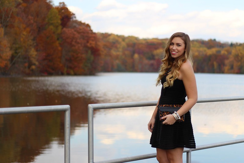 Fall Foliage New York | Strapless Black Party Dress | A Look Back at 10 Years of Blogging Living After Midnite Blogger Jackie Giardina