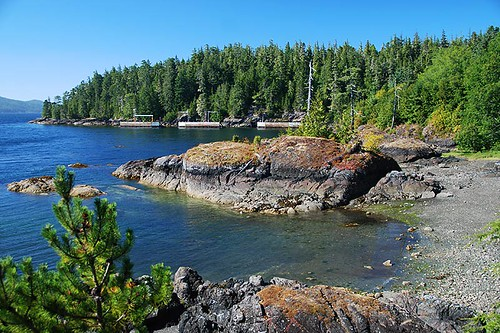 Bear Cove in Port Hardy, North Vancouver Island, British Columbia, Canada