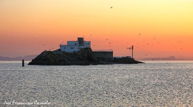 Isla de La Torre en la Bahia de Santander a la puesta del sol, y con las gaviotas revoloteando