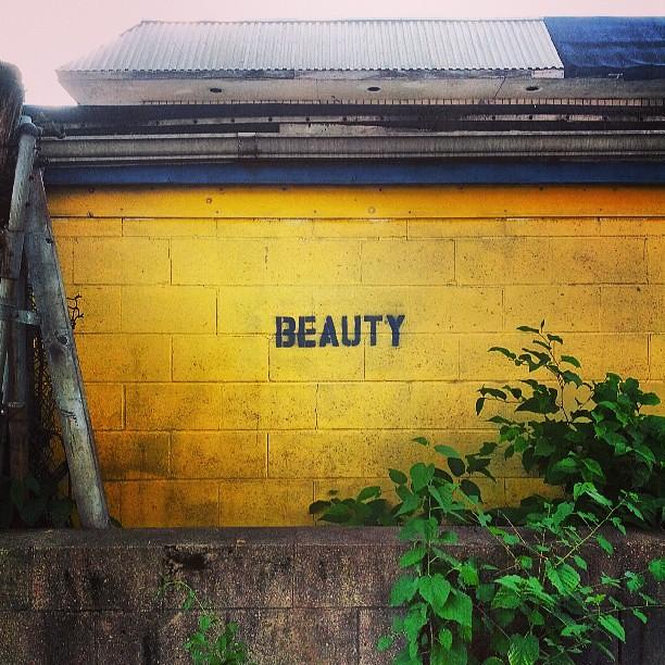 Beauty #notart @notart  #somerville  #somervillema #streetart