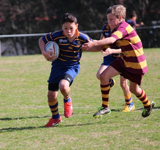 IMG_5428   by Takapuna Rugby