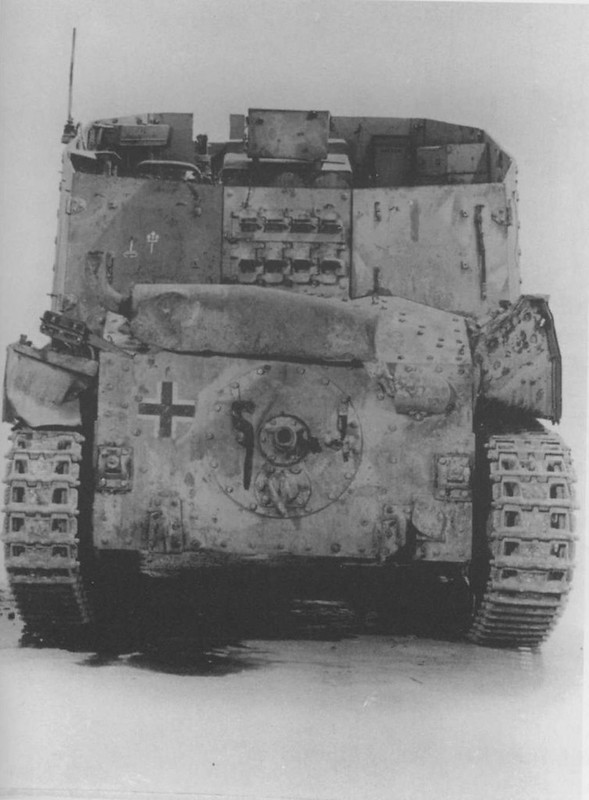 SdKfz 138 - Grille (10)