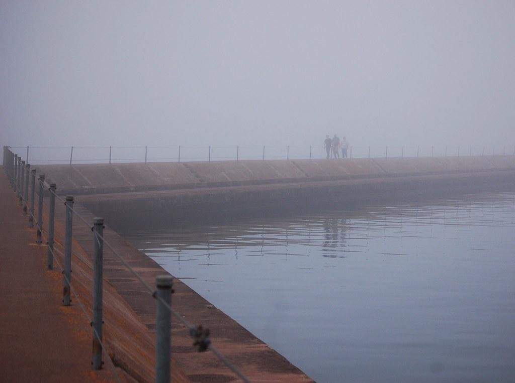 Walk in the Mist