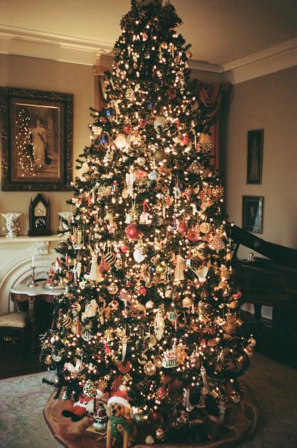 Christmas on the Plantation
