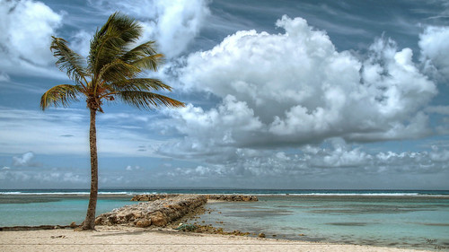 sony plage hdr palmier guadeloupe caraibes tonemapping sonyalpha