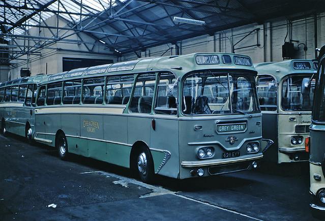 Grey Green 428 EYY