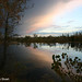 Shades of Autumn - sunset at Sawhill Ponds.