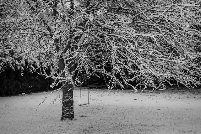 Forgotten Swing, First Snow
