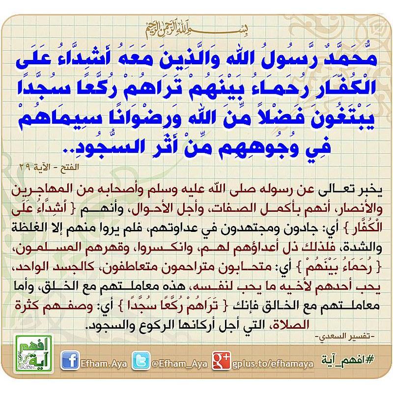 محمد رسول الله والذين معه اشداء