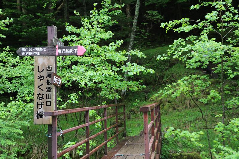 2014-06-29_00044_天狗岳.jpg
