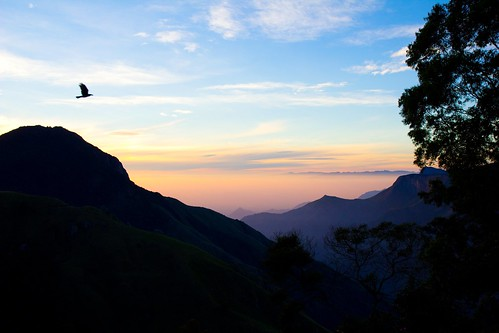morning india mountains sunrise landscape kerala beautifulsky nickif birdinsky irvinefortescue
