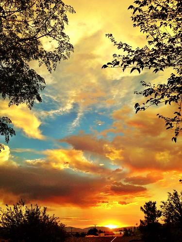 uploaded:by=flickrmobile flickriosapp:filter=nofilter haciendacuatroosos