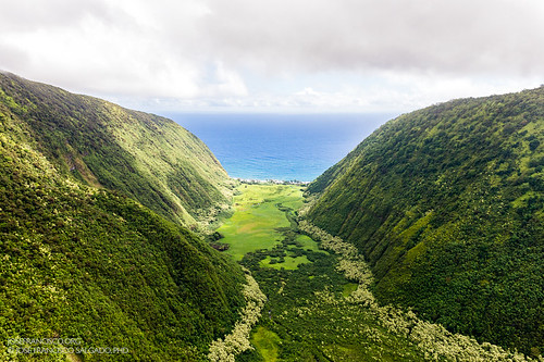 2470mmf28g bigislandofhawaii d4 hamakua hawaii nikkor nikon pacificocean usa unitedstatesofamerica airborne airplane avión green helicóptero helipcoterride verde waipio us waimanuvalley