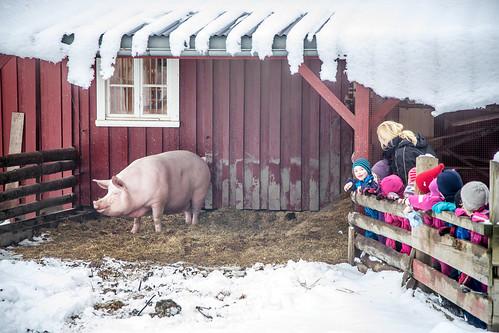 Tur til Norsk Folkemuseum #03 | by H.Treider