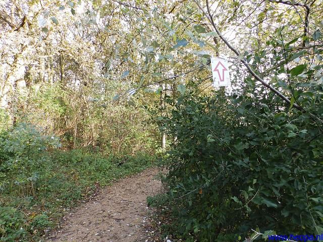 09-11-2013          Beverwijk      23.5 Km  (20)