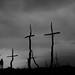 El Bosque de las cruces by Color-de-la-vida