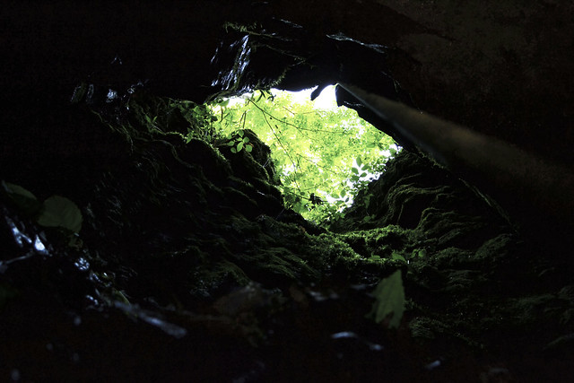 Rothrock Pit Cave