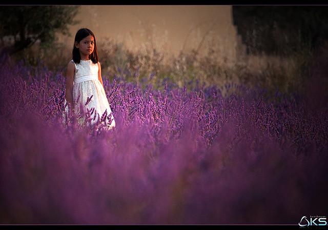 Girl in lavender 2